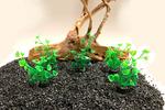 SuperFish Nano aquariumplanten 5cm