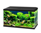 Ciano aquarium 60 led