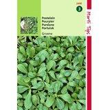 Groen postelein zaden