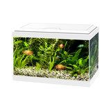 Ciano Aquarium 20 wit