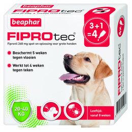 Beaphar FiproTec Spot-On 3+1 Gratis 20-40kg