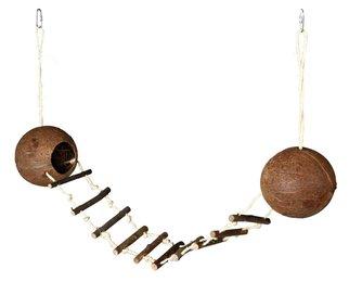 Cocosnoot dubbel met hangbrug