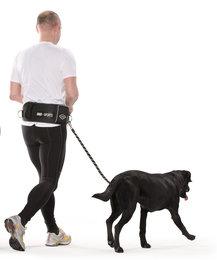 Active Walker Big Dog