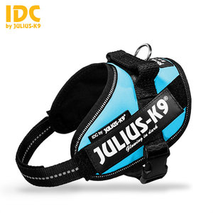 Julius IDC powertuig aquamarine Mini Mini