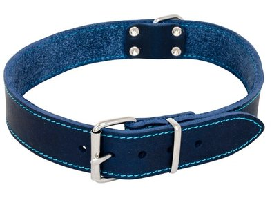 Halsband jack en vanilla blauw