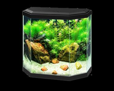 aqua 30 aquarium led