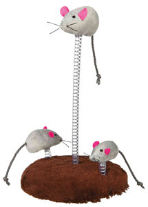 Muizen familie op veer