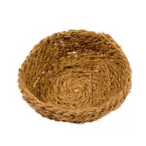 Cocos nestje 15cm