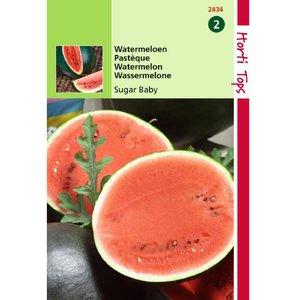 Watermeloenzaden