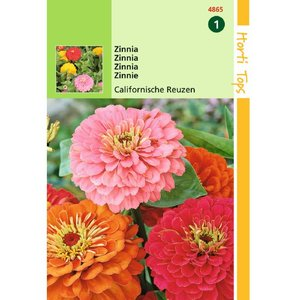 Zinnia Californische Reuzen