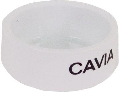 Witte stenenvoerbak Cavia