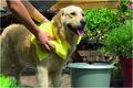 Honden droogdoek